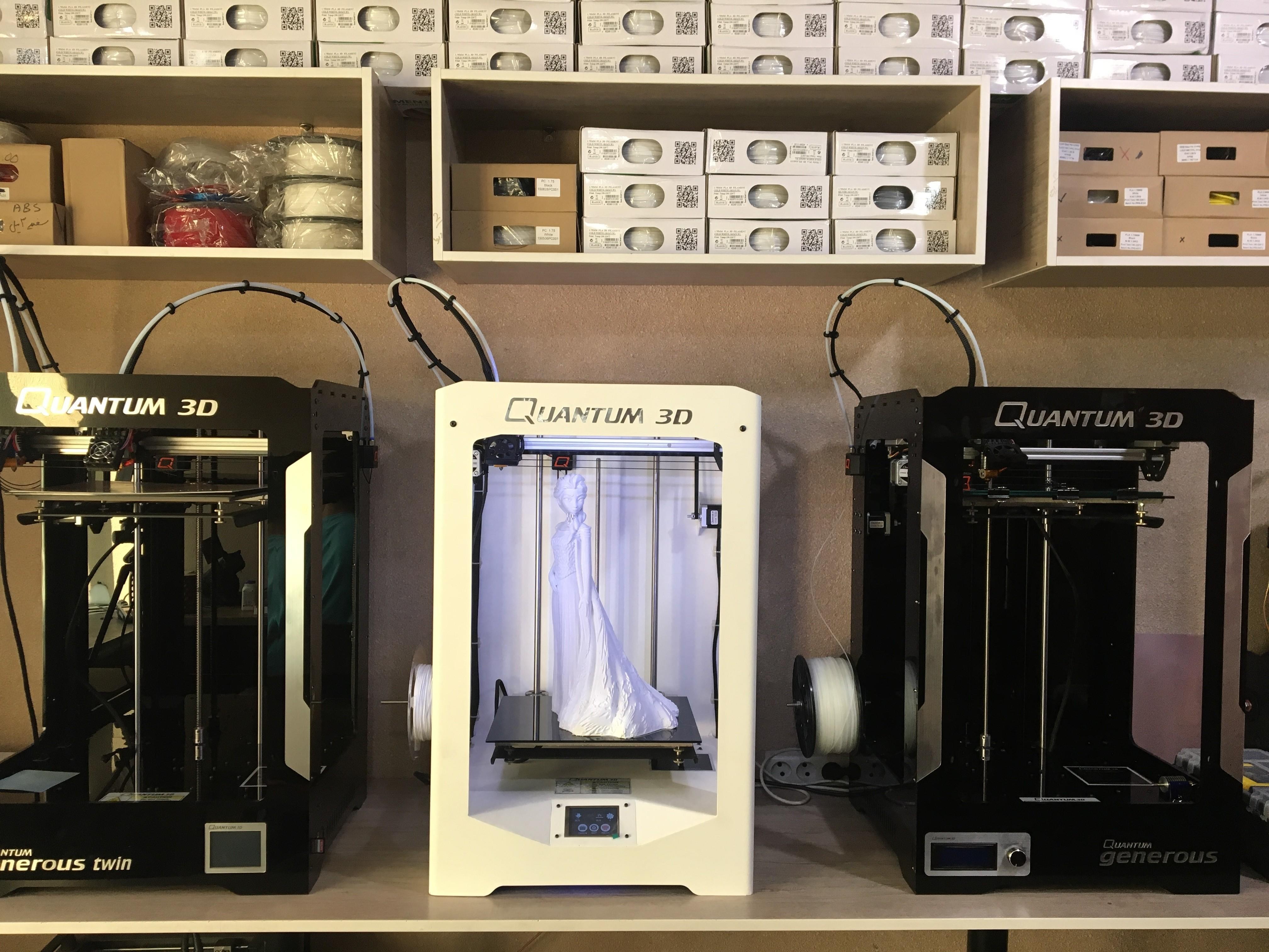 IMG_0471.JPG Télécharger fichier STL gratuit Elsa Doll • Modèle pour impression 3D, Quantum3D