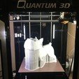 Download free 3D printer files A Wandering Little Dog, Quantum3D