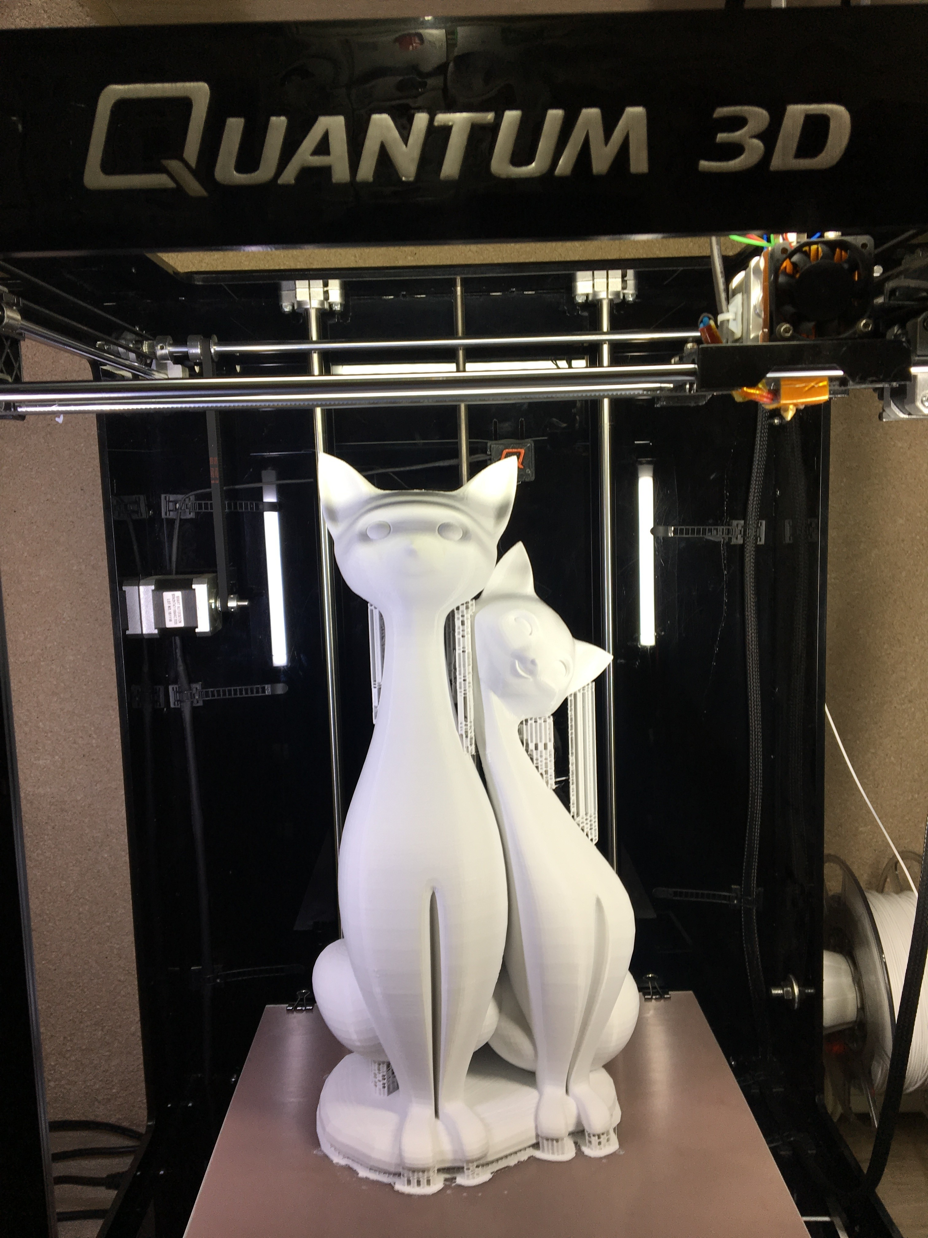 IMG_0273.JPG Download free STL file Twin Cats • 3D print design, Quantum3D