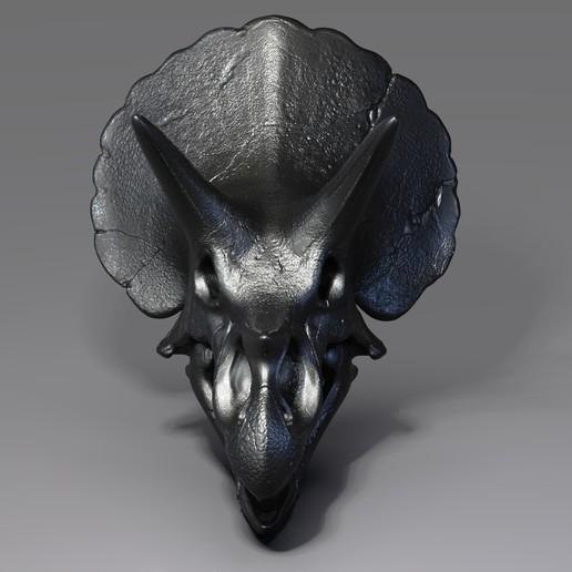 Triceratops Skull Render (2).jpg Download free OBJ file Triceratops Skull • 3D printable model, Dynastinae