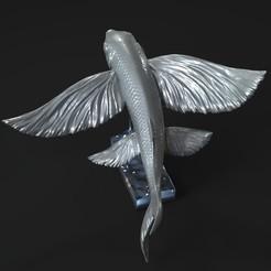 Descargar archivos 3D Peces voladores, 5RVagabond