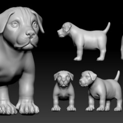 Descargar modelo 3D Puppy pitbull, Albedo
