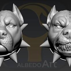 01.jpg Download OBJ file American Bully  • Model to 3D print, Dynastinae