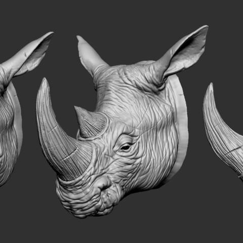 Download 3D printer files Rhino Head, Garawake