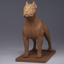 Render (3).jpg Download OBJ file Dogo Argentino • 3D print model, Dynastinae