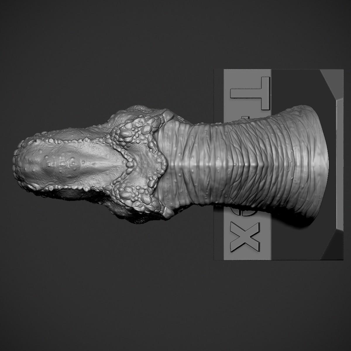Z06.jpg Download OBJ file T-rex Tyrannosaurus • 3D printable object, Dynastinae