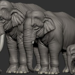 3D print model Elephant asian, Garawake