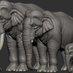 Archivos STL Elefante asiático, Garawake