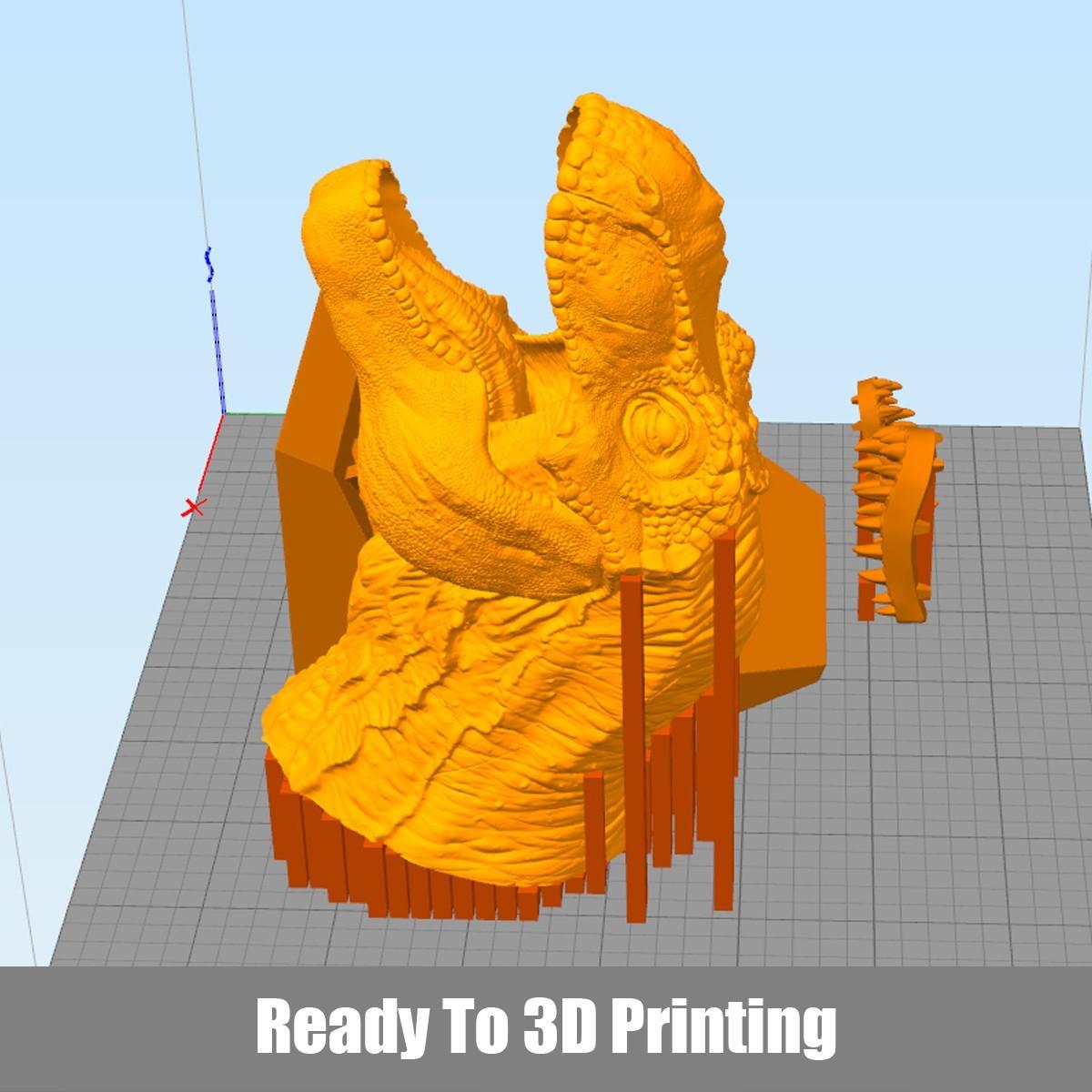 P01.jpg Download OBJ file T-rex Tyrannosaurus • 3D printable object, Dynastinae