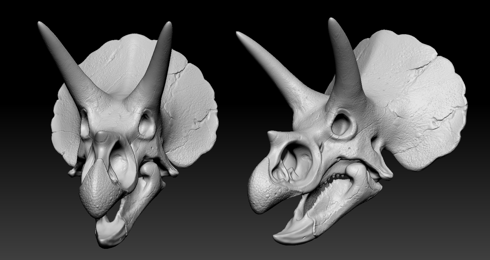 01.jpg Download free OBJ file Triceratops Skull • 3D printable model, Dynastinae