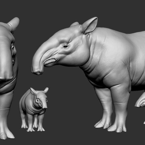 Download 3D printer model Tapirus, Garawake