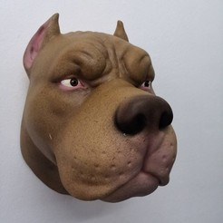 Download 3D model Pitbull Head, 5RVagabond