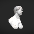 Free 3D file Bust of Trajan, MSR