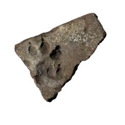 Imprimir en 3D gratis Ladrillo con pata de perro, MonteMorbase
