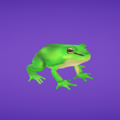 Download free 3D print files Frog, Colorful3D