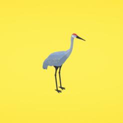modelos 3d gratis Sandhill crane, Colorful3D