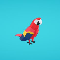 Free 3D model Parrot, Colorful3D