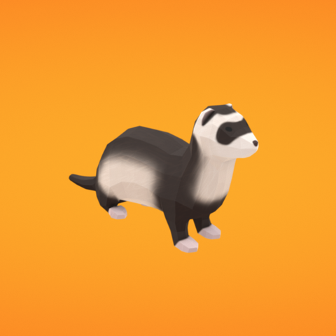Free 3D model Ferret, Colorful3D