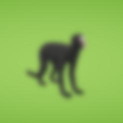 SpiderMonkey.obj Download free OBJ file Spider monkey • 3D printer design, Colorful3D