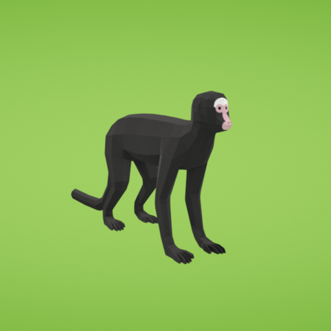 Free 3D printer model Spider monkey, Colorful3D