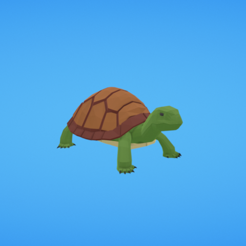 Free 3D model Turtle, Colorful3D