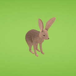 Plan 3D gratuit Jackrabbit, Colorful3D