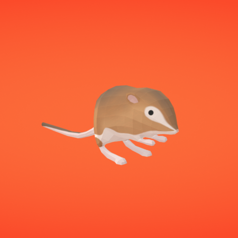 Free STL Kangaroo rat, Colorful3D
