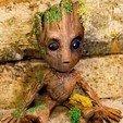 Descargar archivos STL gratis Bebé Groot, blackmanshadow