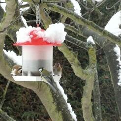 DSC00113.JPG Télécharger fichier STL gratuit Mangeoire oiseau • Objet pour imprimante 3D, Algernon