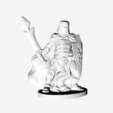 Descargar modelo 3D gratis Paladín marcado por la batalla, mrhers2