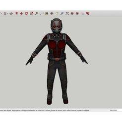 STL gratuit Ant_Man, Max73D