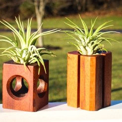 Download 3D printing files Air Plant Holders, mtairymd