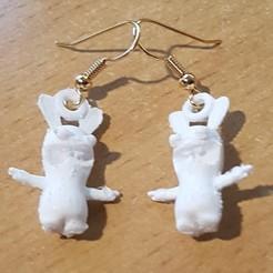 3D printing model Earring Pending Earring - Rabbit Cretin, yalcars