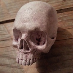 3D printer file Human Skull, WillyD-abra