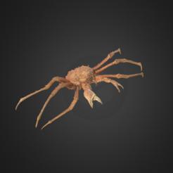 Free STL King Crab, AucklandMuseum
