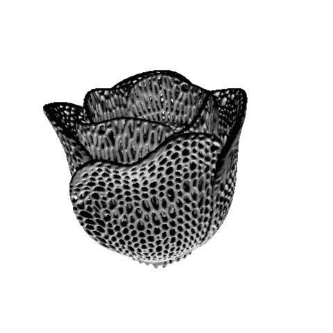 Free Tulip voronoi 3D model, juanpix