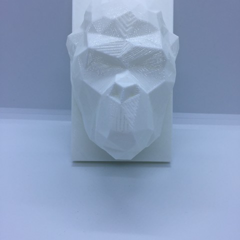 IMG_1968.JPG Download STL file kong head • 3D print design, juanpix