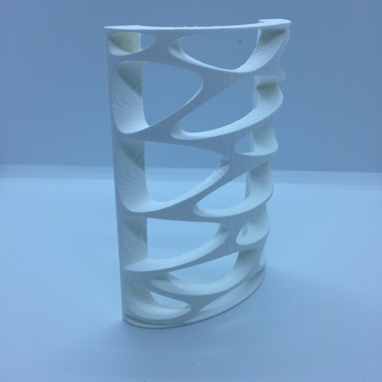 IMG_1996.JPG Download free STL file wall-mounted • 3D printer model, juanpix