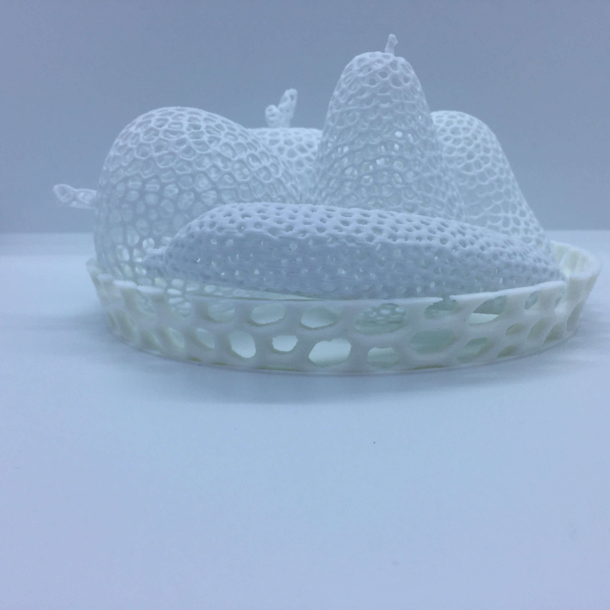 IMG_2095.JPG Download STL file Voronoi fruit bowl • 3D printing model, juanpix