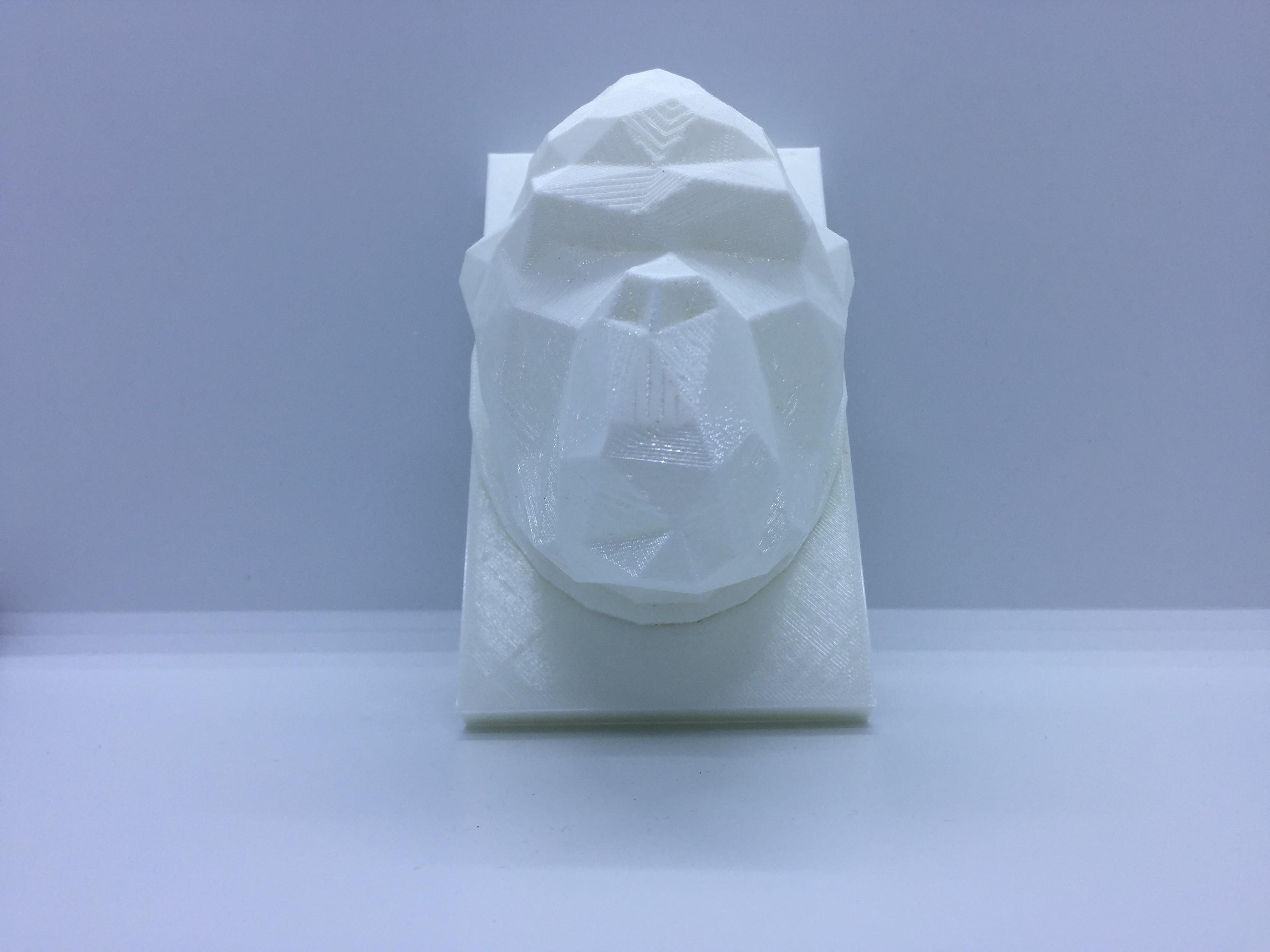 IMG_1970.JPG Download STL file kong head • 3D print design, juanpix