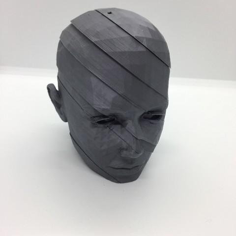 juanpix free 3d printer files head low poly poly