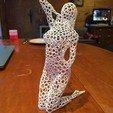 IMG_1849.JPG Télécharger fichier STL femme voronoi pose • Objet pour imprimante 3D, juanpix