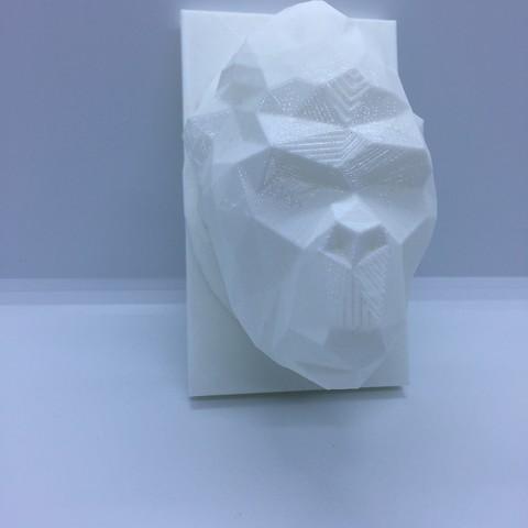 IMG_1969.JPG Download STL file kong head • 3D print design, juanpix