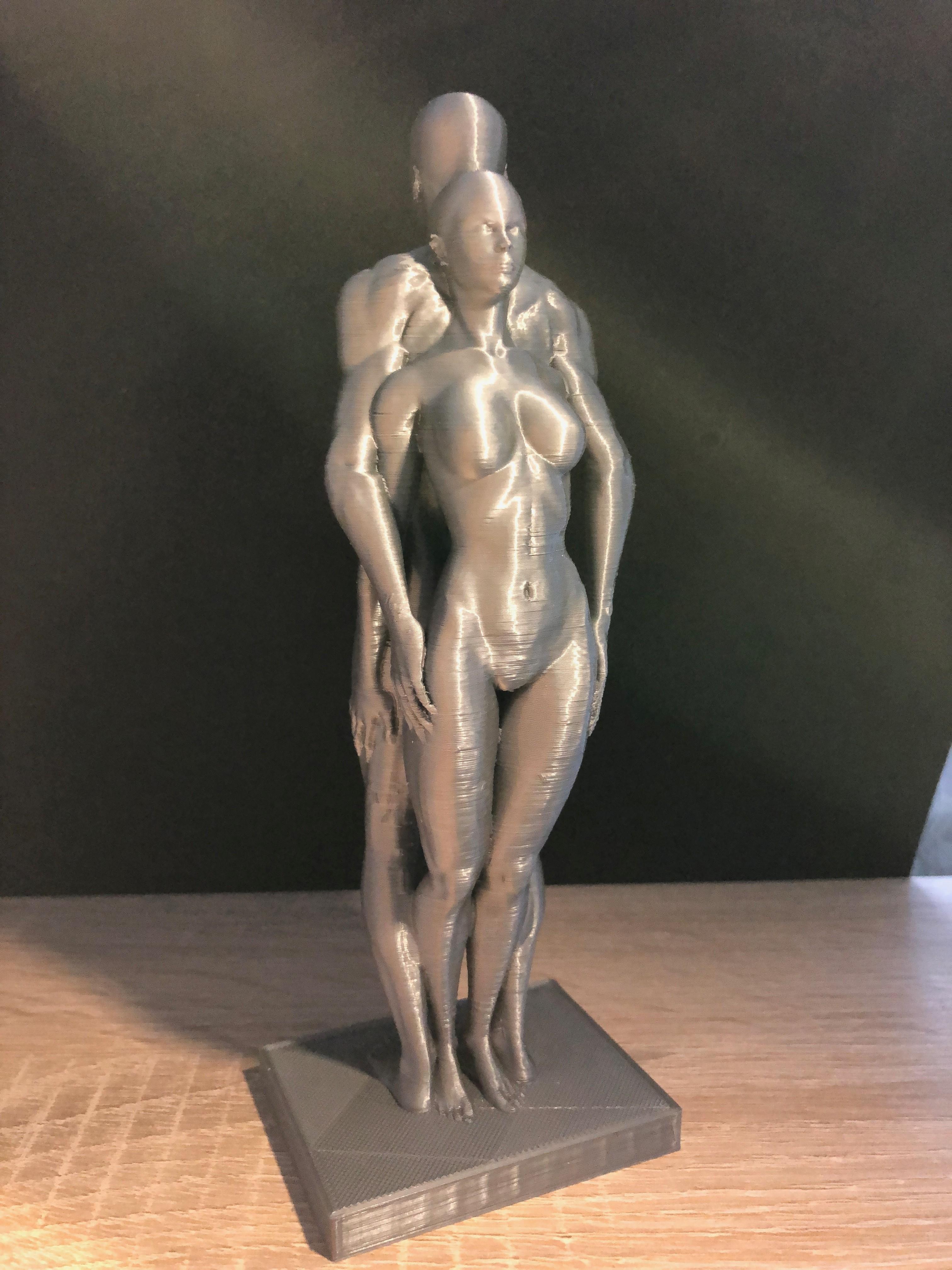 IMG_0389.jpg Télécharger fichier OBJ couple homme femme • Plan pour impression 3D, juanpix