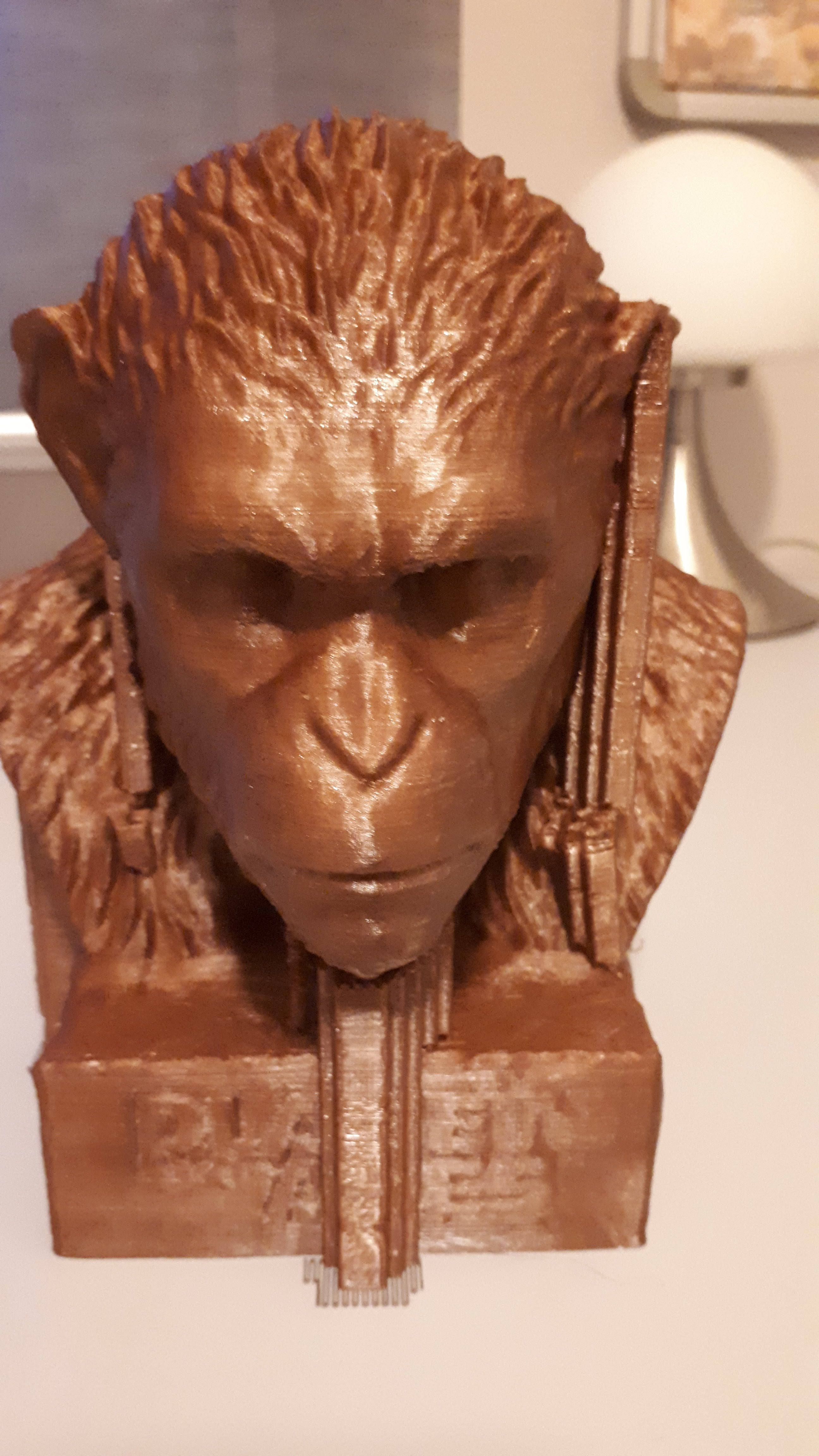 20180124_173045.jpg Download free STL file Caesar • 3D printer template, CedricWeier