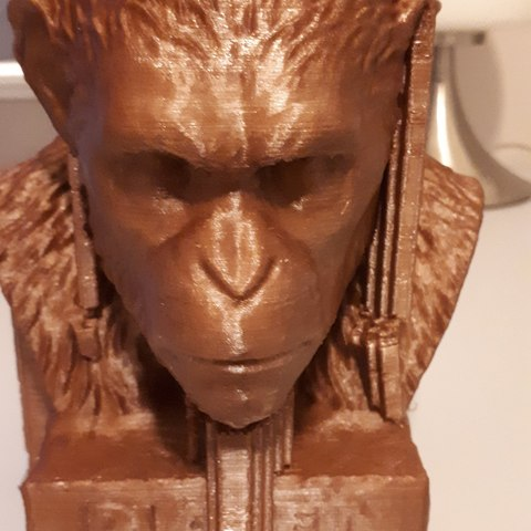 Free 3D printer designs Caesar, CedricWeier