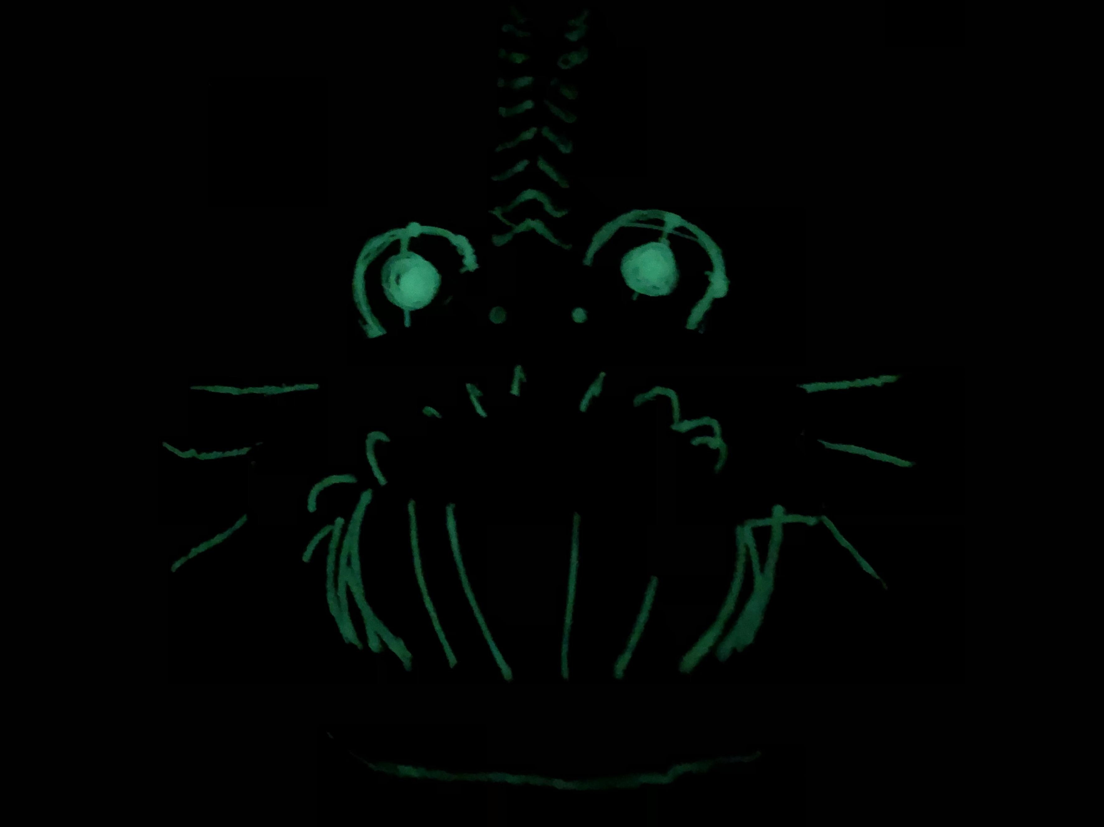 IMG_6509.jpg Download free STL file Angler Fish Lamp • 3D printable template, coolthingsbyjacob