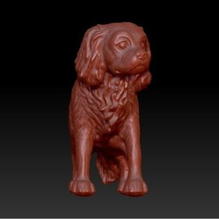 Download 3D printing templates Cavalier King Charles, DPRmodels