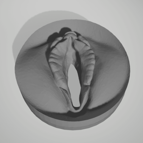 Download STL file can cap pussy • 3D printable object, 3D-XYZ