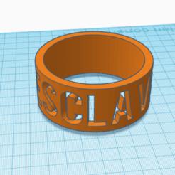 """Modelo 3D anillo """"esclavo"""", devine"""